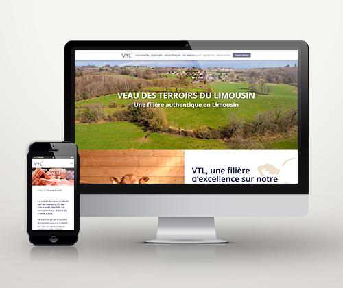 Présentation du site internet VTL